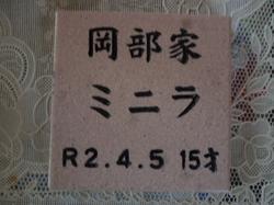 P1080862.JPG