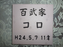 P1090511.JPG