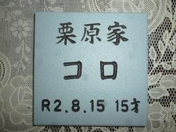 P1090510.JPG