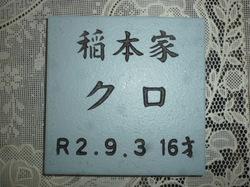 P1090689.JPG