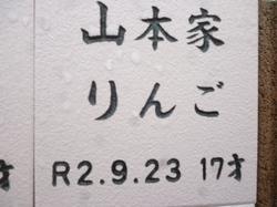 P1090791.JPG