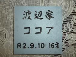 P1090875.JPG