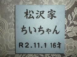 P1090962.JPG